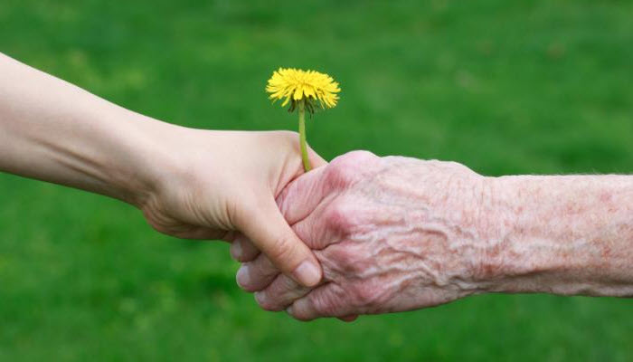 International Day for Older Persons falling today